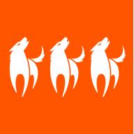Reifen Center Wolf Team